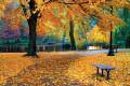 Fall: A Fresh Start