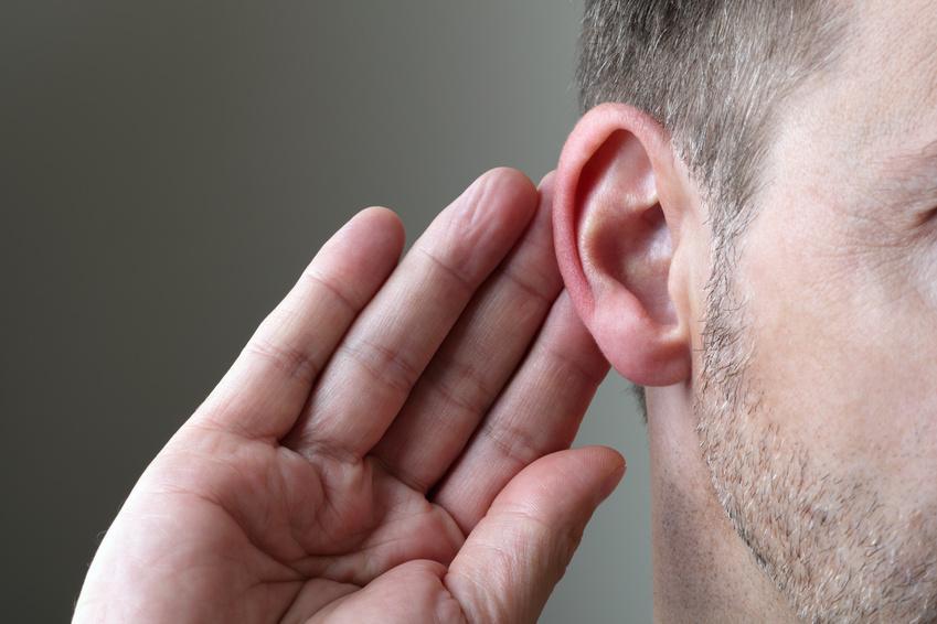 Listen to Learn