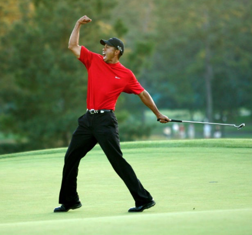The Time of Tiger